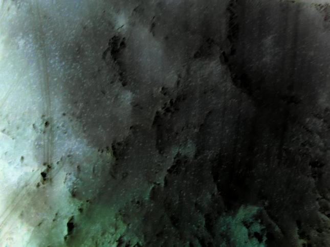 Cosmos 32 - Achi Sinauridze (photodom.com)